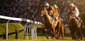 Canlı Bahis Sitelerinde At Yarışı Bahisleri Nasıl Oynanır?